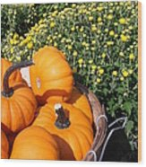 Mini Pumpkins Wood Print by Kimberly Perry
