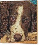 Missing Jared Wood Print by James Steele