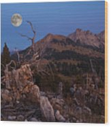 Mistress Of Night Wood Print by Ars Silentium