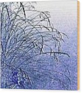 Misty Blue Wood Print by Will Borden