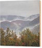 Misty Morning I Wood Print by Charles Warren