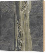 Mother Canada I Wood Print by Wayne Bonney