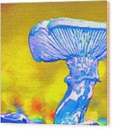 Mushroom Whimsy  Wood Print by Marie Jamieson