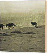 Mustangs Wood Print by Betsy Knapp