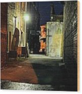 No Alley Cats Tonight Wood Print by Jan Amiss Photography