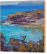 Norah Head Central Coast Nsw Wood Print by Graham Gercken