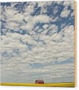 Old Abandoned Red Barn In The Midst Wood Print by Robert Postma