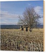 Old Hut Isolated In A Field. Auvergne. France Wood Print by Bernard Jaubert