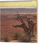 Old One Wood Print by Robert Bales