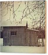 Old Shed In Wintertime Wood Print by Sandra Cunningham