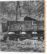 Old Wagon Wood Print by Lisa Moore