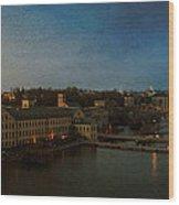 Panoramic Appleton Skyline Wood Print by Joel Witmeyer