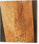 Paperbag Wood Print by Ghazel Rashid
