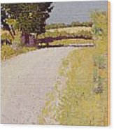 Path In The Country Wood Print by Charles Angrand