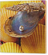 Pearl In Oyster Shell Wood Print by Garry Gay