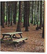 Picnic Table Wood Print by Carlos Caetano