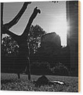 Playing With The Sun II - Philadelphia - Pensilvania - Sunset Wood Print by Lee Dos Santos