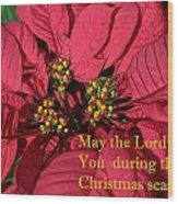 Poinsetta For Christmas Wood Print by Linda Phelps