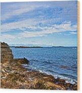 Point Peron Wa Wood Print by Imagevixen Photography