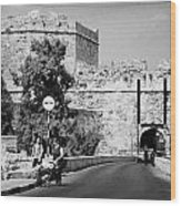Porta Di Limisso Old Land Limassol Gate In The Old City Walls Famagusta Wood Print by Joe Fox
