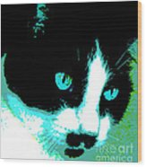 Poster Kitty Wood Print by Elinor Mavor