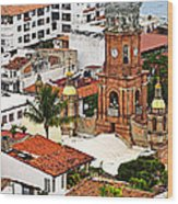 Puerto Vallarta Wood Print by Elena Elisseeva