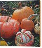 Pumpkin Patch Wood Print by Kathy Yates