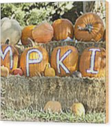 Pumpkins P U M P K I N S Wood Print by James BO  Insogna