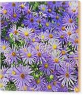 Purple Reigns Wood Print by Joan Carroll