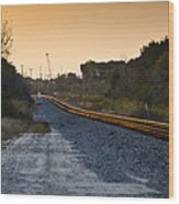 Railway Into Town Wood Print by Carolyn Marshall
