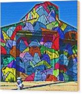 Rainbow Jug Building Wood Print by Samuel Sheats