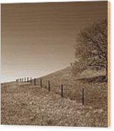 Ranch Road Oak Wood Print by Kathy Yates