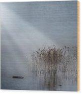 Rays Of Light Wood Print by Joana Kruse