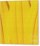 Rays Of Sunflower Wood Print by Luke Moore