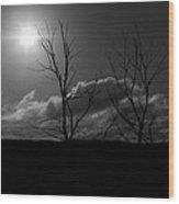 Reach For The Sun Wood Print by Nigel Jones