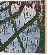 Red Crystal Refletcion Wood Print by Garry Gay