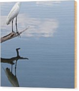 Reflecting Egret Wood Print by John Simandl