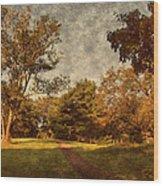 Ridge Walk - Holmdel Park Wood Print by Angie Tirado