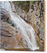 Ripley Falls - Crawford Notch State Park New Hampshire Usa Wood Print by Erin Paul Donovan