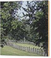 Road To Lynchburg Virginia Wood Print by Teresa Mucha