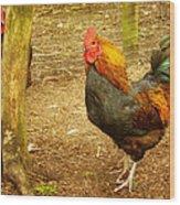 Rooster Farm Wood Print by Yvon van der Wijk