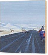 Saskatchewan Beauty Wood Print by Neil Woodward