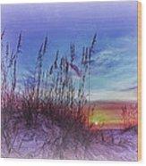 Sea Oats 5 Wood Print by Skip Nall