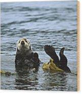 Sea Otter Enhydra Lutris Wrapped Wood Print by Konrad Wothe