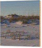 Seaside Dunes 4 Wood Print by Charles Warren