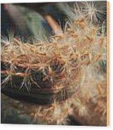 Seeds Wood Print by Joana Kruse