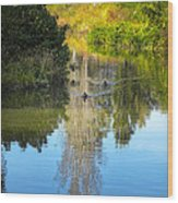 Serene Reflection Wood Print by Julie Palencia
