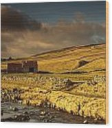 Shed In The Yorkshire Dales, England Wood Print by John Short