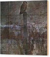Short Eared Owl Wood Print by Jerry Cordeiro