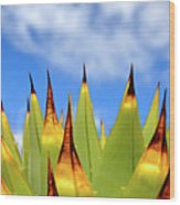 Side View Of Cactus On Blue Sky Wood Print by Greg Adams Photography